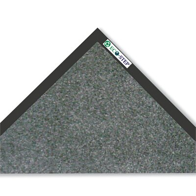 Eco-Step Doormat Color: Charcoal, Mat Size: Rectangle 3x10