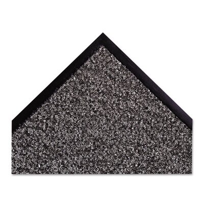 Dust-Star Solid Doormat Rug Size: 4x6, Color: Charcoal