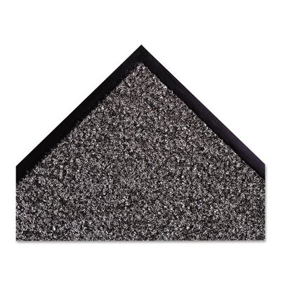 Dust-Star Solid Doormat Rug Size: 3x10, Color: Charcoal