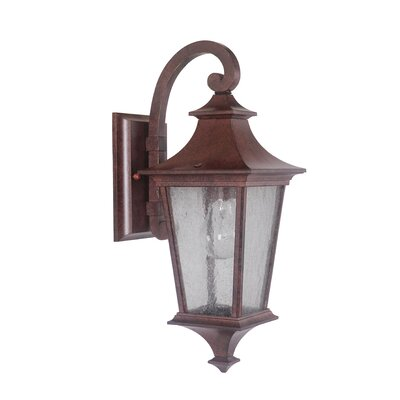 Argent II 1-Light Outdoor Wall Lantern Finish: Aged Bronze