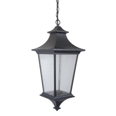 Argent II 3-Light Outdoor Hanging Lantern Finish: Midnight