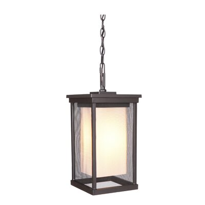 Riviera II 1-Light Outdoor Hanging Lantern