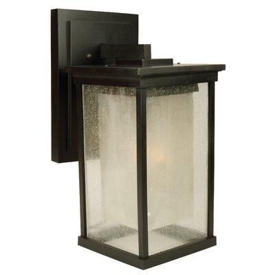 Oakhill 1-Light Metal Outdoor Wall Lantern Size: 17.25