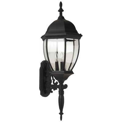 Bent Glass 3-Light Outdoor Sconce