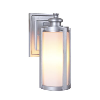 Remi 1-Light Outdoor Wall Lantern