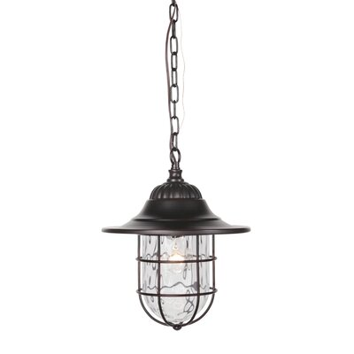 1-Light Outdoor Hanging Lantern