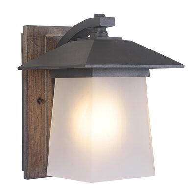 Terrace 1-Light Outdoor Sconce