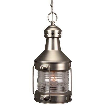 Carriage House 1-Light Outdoor Hanging Lantern Finish: Brushed Nickel