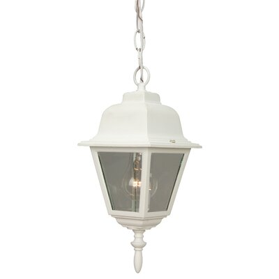 Carriage House 1-Light Outdoor Hanging Lantern Finish: Matte White