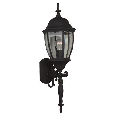 Bent Glass 1-Light Outdoor Sconce Finish: Matte Black