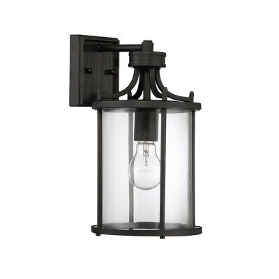 Carlton 1-Light Outdoor Wall Lantern Finish: Aged Bronze Brushed
