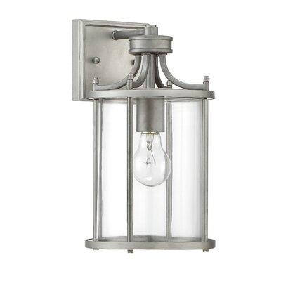 Carlton 1-Light Outdoor Wall Lantern Finish: Chromite