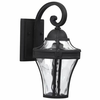 Parish 1-Light Outdoor Wall Lantern Finish: Matte Black