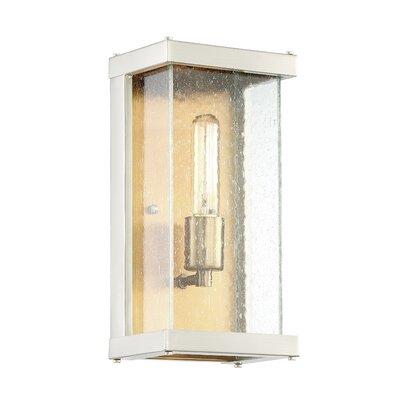 Brayden Studio Anguiano 1-Light Outdoor Wall Lantern