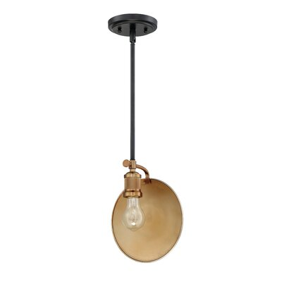 Kaaterskill 1-Light Mini Pendant Finish: Flat Black/Patina Aged Brass