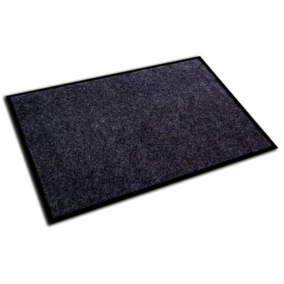 Hastings Rectangular Indoor Plush Entrance Doormat Size: Rectangle 4 x 3, Color: Charcoal