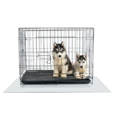 Tex Polycarbonate Dog Crate Floor Protector Size: 47 x 35