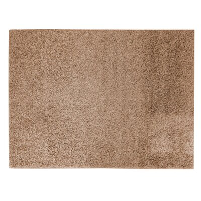 Soft Settings Taupe Shag Area Rug Rug Size: 5 x 7