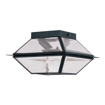Orchard Lane 2-Light Flush Mount Finish: Black