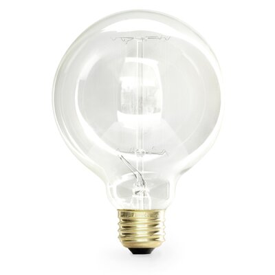 40 Watt Incandescent Light Bulb (Set of 6)