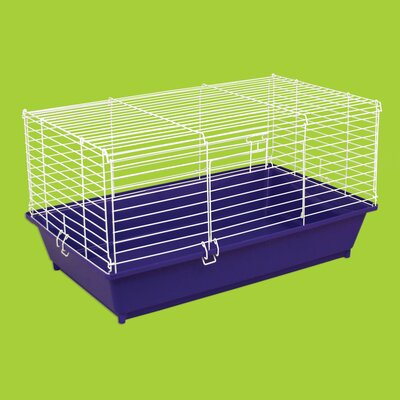 Home Sweet Home Small Animal Cage Size: 15.5 H x 28.25 W x 17.25 D