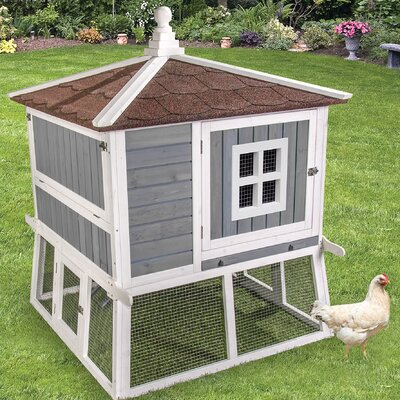 Premium Pagoda Chicken Coop