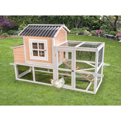 Premium + Big Dutch Barn Chicken Coop