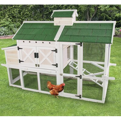 Premium Chicken Coop with Roosting Bar