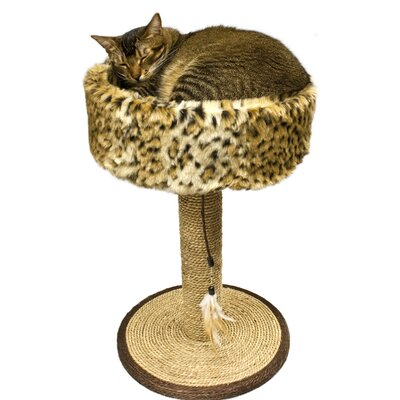 Wild Sisal Scratch Post