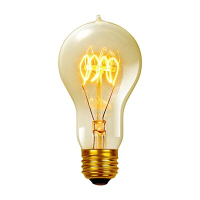 Vintage Edison 60 Watt (2700K) A19 Quad Loop Incandescent Filament Light Bulb