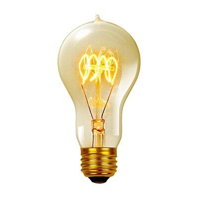 Vintage Edison 60 Watt (2700K) A19 Quad Loop Incandescent Filament Light Bulb
