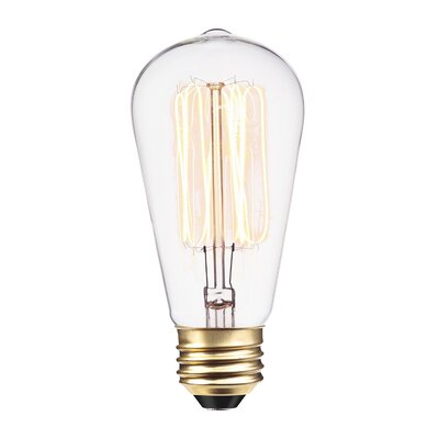 Vintage Edison (2700K) S60 Squirrel Cage Incandescent Filament Light Bulb Wattage: 60