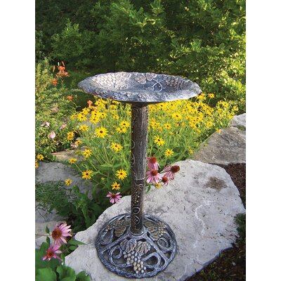 Oakland Living Vineyard Bird Bath - Finish: Antique Pewter at Sears.com