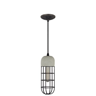 Digregorio 1-Light Mini Pendant I Finish: Black Iron