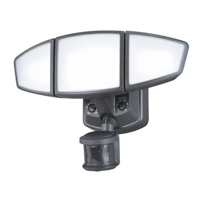 Omega 3-Light Security Light