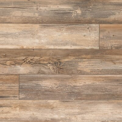 Elevae 6.13 x 54.34 x 12mm Pine Laminate Flooring in Windblown Pine