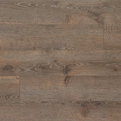 Elevae 6.13 x 54.34 x 12mm Oak Laminate Flooring in Terrain Oak