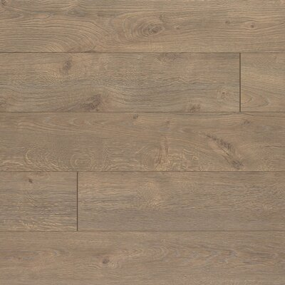 Elevae 6.13 x 54.34 x 12mm Oak Laminate Flooring in Tranquil Oak