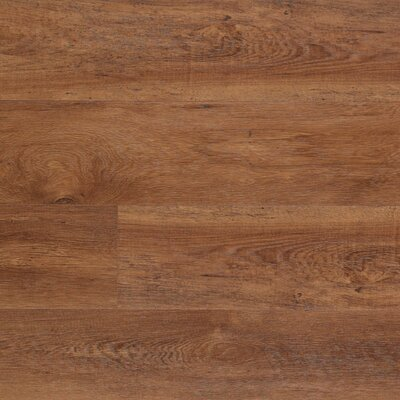 Dominion 6.13 x 54.34 x 12mm Chestnut Laminate Flooring in Morning Chestnut
