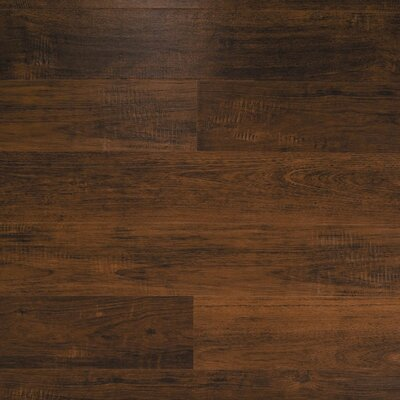 Dominion 6.13 x 54.34 x 12mm Merbau Laminate Flooring in Malaysian Merbau