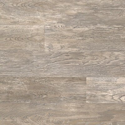 Dominion 6.13 x 54.34 x 12mm Oak Laminate in Nickel Oak