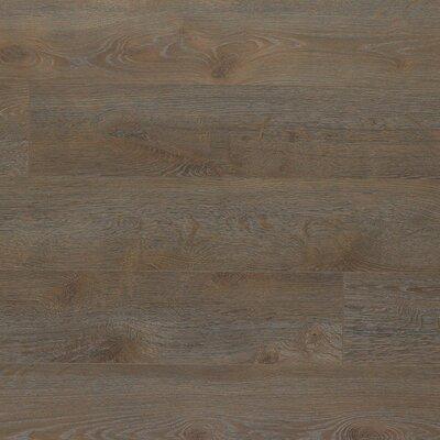 Elevae 6.13 x 54.34 x 12mm Oak Laminate in Gentry Oak
