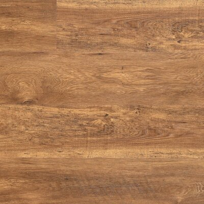 Dominion 6.13 x 54.34 x 12mm Chestnut Laminate Flooring in Aged Chestnut