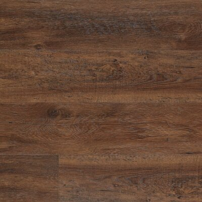 Dominion 6.13 x 54.34 x 12mm Chestnut Laminate Flooring in Barrel Chestnut