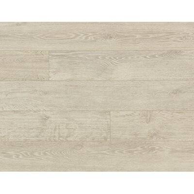 Veriluxe 8 x 80.68 x 9.5 mm Oak Laminate Flooring in Morning Frost