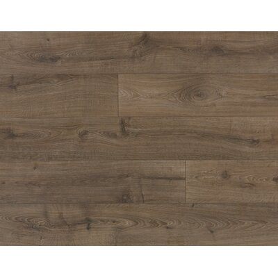 Veriluxe 8 x 80.68 x 9.5 mm Oak Laminate Flooring in Kingsbridge