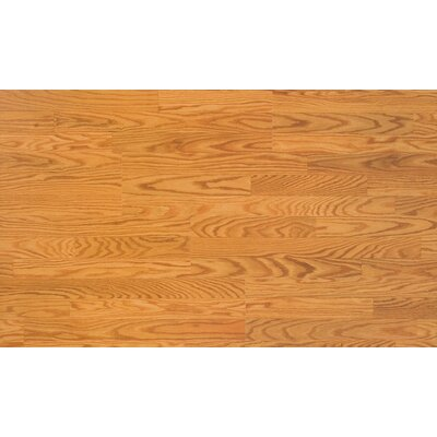 Home Series 8 x 47 x 7mm Oak Laminate Flooring in Butterscotch Oak