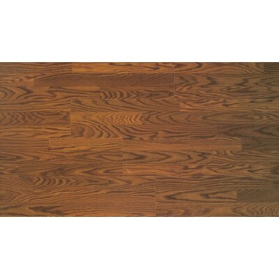 Home Series 8 x 47 x 7mm Oak Laminate Flooring in Spice Oak