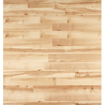 Home Series 8 x 47 x 7mm Maple Laminate Flooring in Blonde Maple
