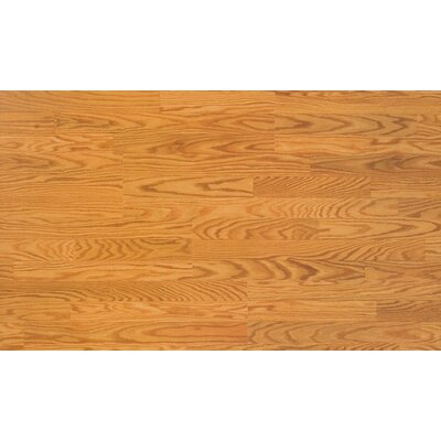 Home Series Sound 8 x 47 x 7mm Oak Laminate in Butterscotch Oak